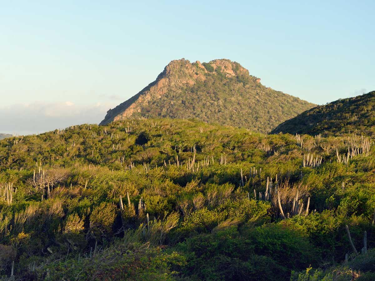 Curacao_Landscape_big